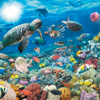 5000 piece Jigsaw Puzzle Ravensburger - Underwater World