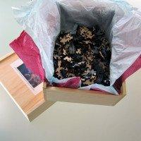 Barnard-Dragon-Mountain-Wooden-Jigsaw-Puzzle--box-copy