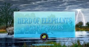 Herd of Elephants Jigsaw Puzzle
