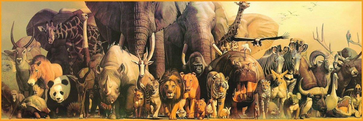 Noah Ark Panoramic puzzle