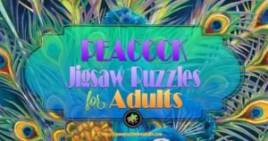 Peacock Jigsaw Puzzles For Adults | Absolutely Beautiful!