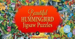 Hummingbird Jigsaw Puzzles Absolutely Beautiful