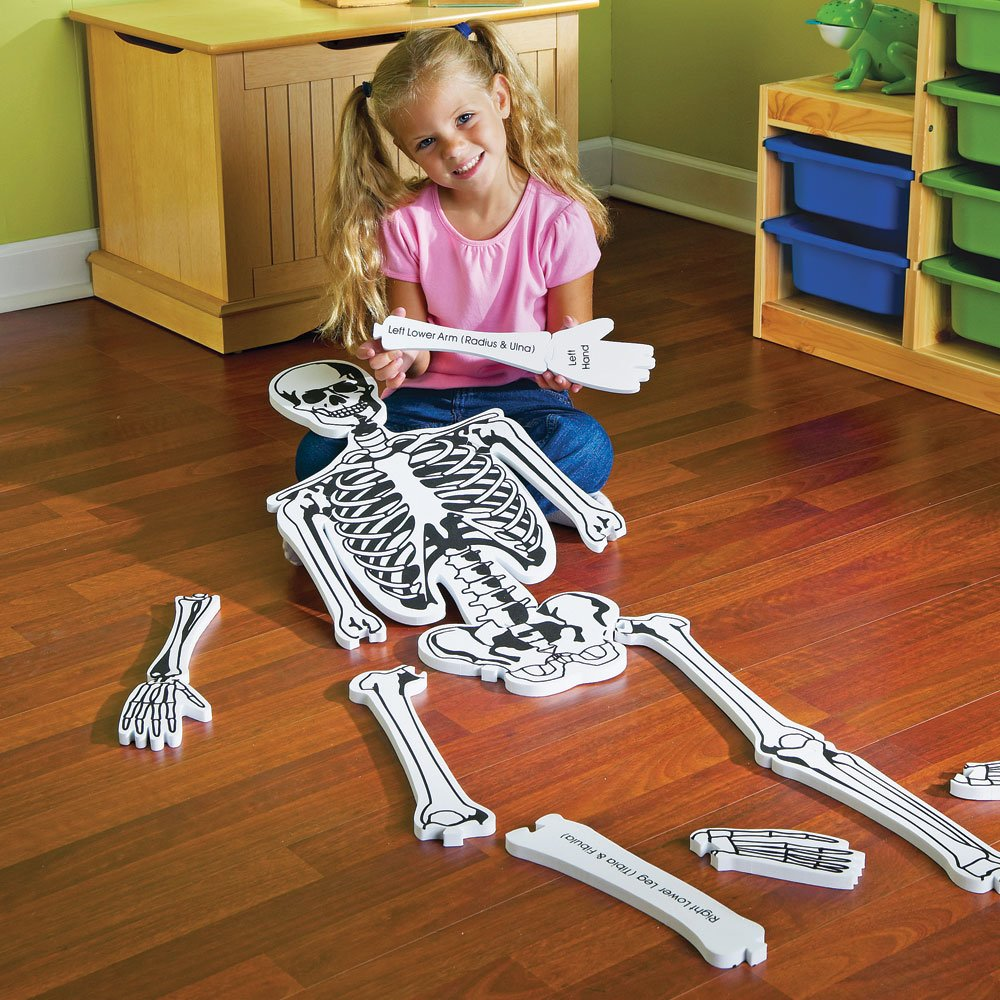 Human Anatomy Floor Puzzle.Human Anatomy Puzzles Educational And Fun ...