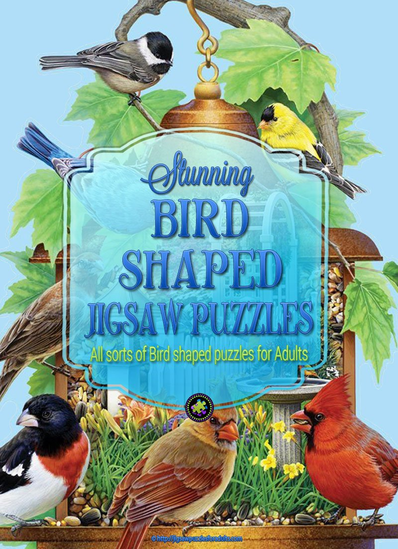 Bird Shaped Puzzles