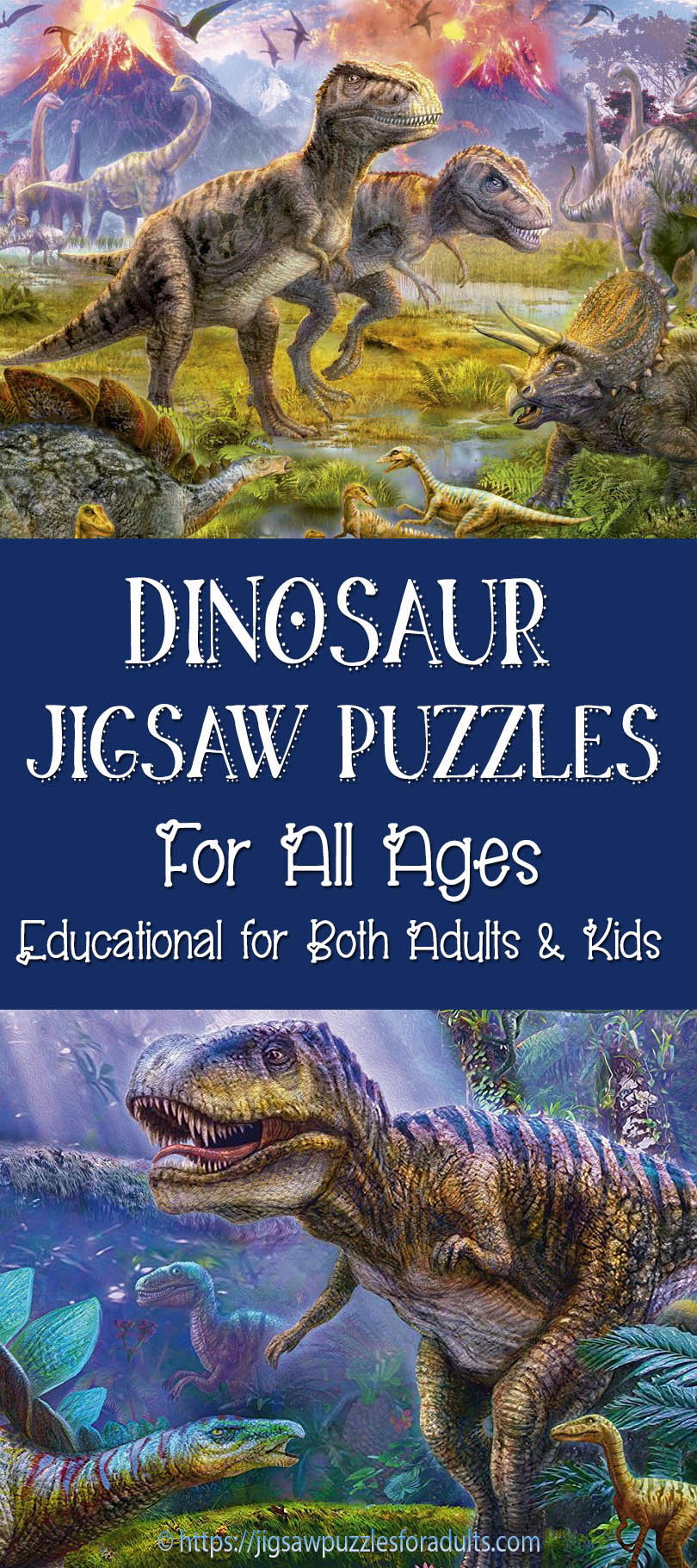 Jigsaw puzzles for adults retailers