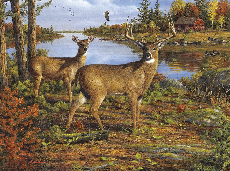 Jigsaw Puzzles Of Deer - Absolutely Stunning Wildlife Deer