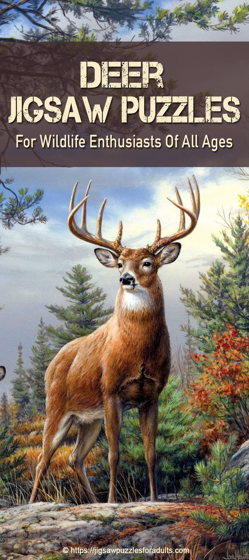 jigsaw puzzles of deer